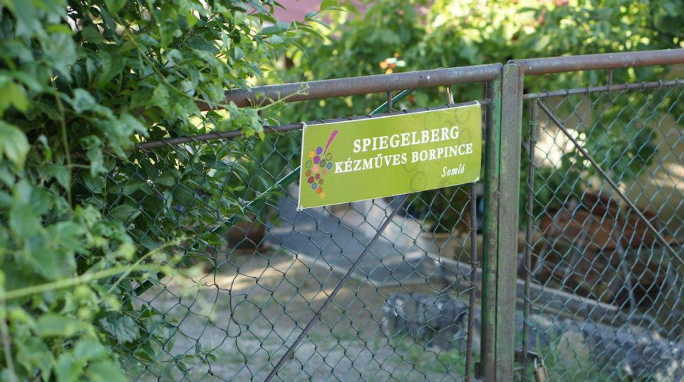 Spiegelberg Pince